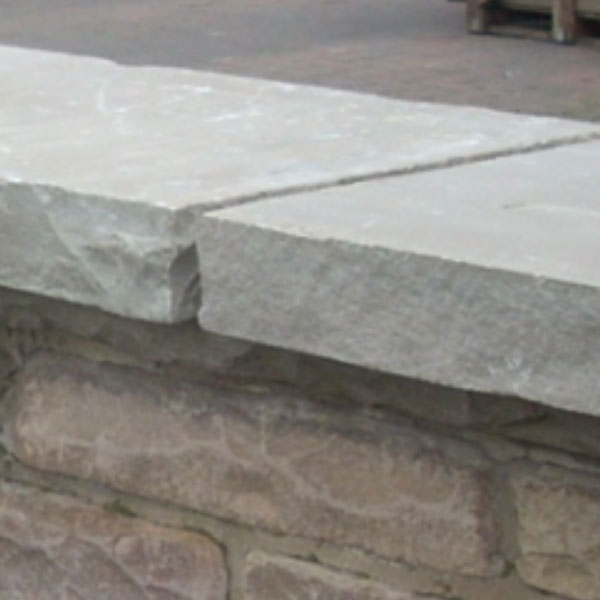 Raj Green Natural Sandstone Coping Stones